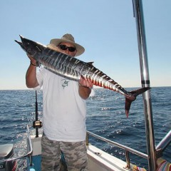 Half-Day Combo Charter Reef-Fishing And Snorkel