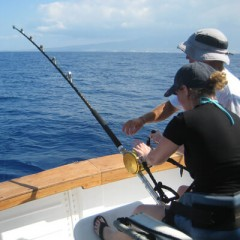 Half Day Deep Sea Fishing Charters in Grand Cayman