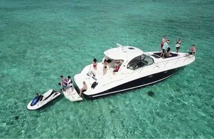 Grand Cayman Fishing Charters And Ra...